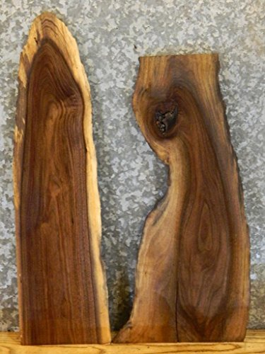 2- Partial Natural Edge Black Walnut Taxidermy Base Wood Slabs T: 1 1/8'', W: 9'', L: 32 1/8'' - 8153-8154 by The Lumber Shack