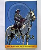 Mapolisa