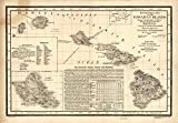 Imagekind Wall Art Print entitled Vintage Map Hawaii (1893) Alleycatshirts @Zazzle | 23 x 16