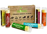 USDA Organic Lip Balm by Sky Organics – 6 Pack Assorted Flavors –