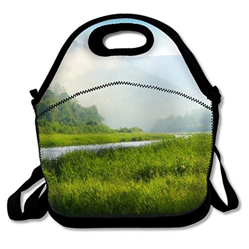 - Mountain Peak Under The Sun Reusable Insulated Lunch Tote Bag Portable Lunchbox Handbag