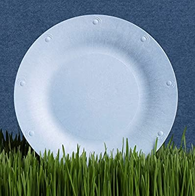 Blueware Compostable Plate, 8-Pack