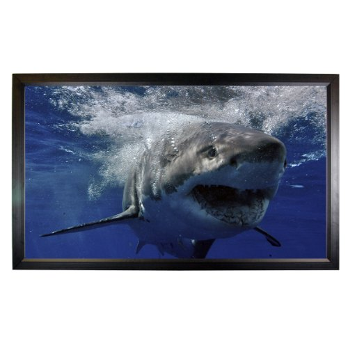 """135"""" Fixed Frame Projector Screen (120""""x68"""") Projection Screen Mustang SC-F135CW169"""