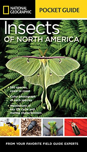 Handy, authoritative, and easy-to-read, this field guide to the insects of North America is part of the growing National Geographic Pocket Guide series. This guide provides spot-on descriptive information, authoritative photography and illustrations,...