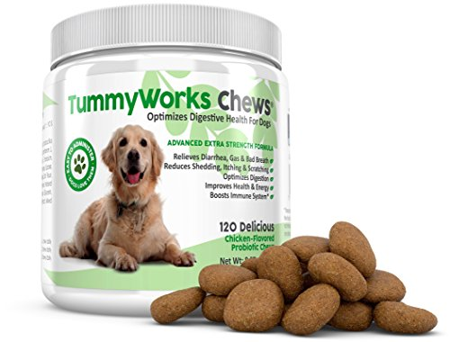 TummyWorks Probiotic Chews for Dogs. Relieves Diarrhea, Upset Stomach, Gas, Constipation & Bad Breath, Itching, Allergies & Yeast Infections. With Digestive Enzymes & Prebiotics. Made in USA 120 count