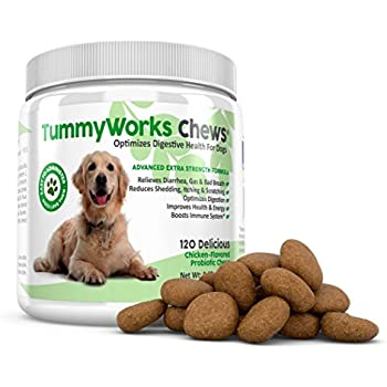 Amazon Com Tummyworks Probiotic Chews For Dogs Relieves