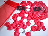 10 White Unscented Tealight Candles with 300 Faux Red Rose Petals and Clear Heart Shaped Box Gift Set