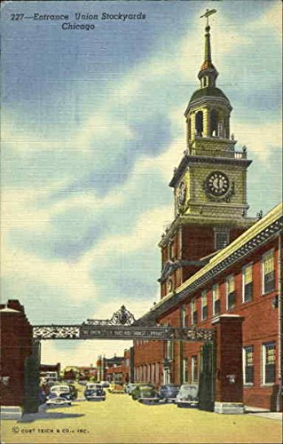 (Entrance Union Stockyards Chicago, Illinois Original Vintage Postcard)