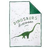 DISCOVERY Dinosuar Velvet Blanket