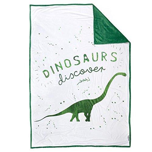 DISCOVERY Dinosuar Velvet Blanket by Mermaid Pillow Co