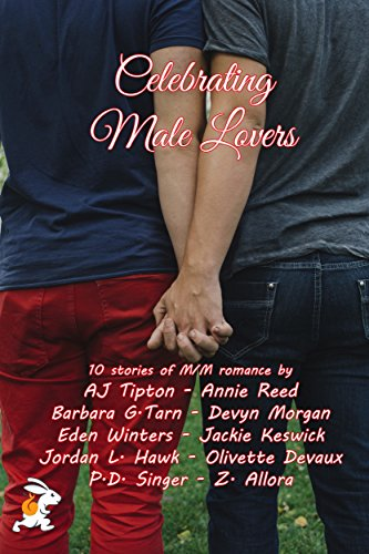 Celebrating Male Lovers: A 10 M/M Books Box Set (Body Switch Reed)