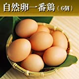 水郷のとりやさん 平飼い 鶏卵 放し飼い自然卵 『一番鶏』 有精卵6個詰 (5個+破損保障分1個)【冷蔵限定 冷凍商品と同梱不可】