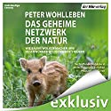 Das geheime Netzwerk der Natur: Wie Bäume Wolken machen und Regenwürmer Wildschweine kontrollieren Hörbuch von Peter Wohlleben Gesprochen von: Peter Kaempfe