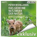 Das geheime Netzwerk der Natur: Wie Bäume Wolken machen und Regenwürmer Wildschweine kontrollieren | Peter Wohlleben