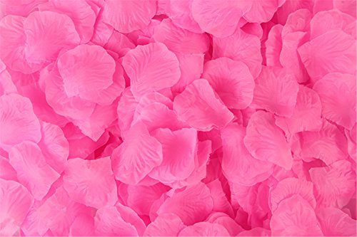 WOAINI 2000 Pieces Pink Rose Petals – Artificial Flower Petals – Romantic Wedding Flower Decorations (Pink)