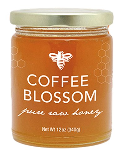 GloryBee Trade Coffee Blossom Honey product image