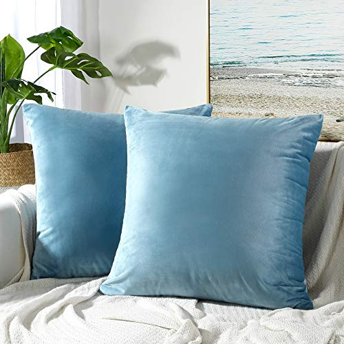 JUSPURBET Velvet Pillow Covers 18x18 Inches,Pack of 2 Throw Pillow Covers for Sofa Couch Bed,Decorative Super Soft Throw Pillows Cases,Light - 18 18 X Light