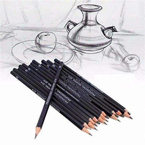 TMROW Artist Pencil Collection Best Quality 14pcs/Set 12B 10B 8B 7B 6B 5B 4B 3B 2B B HB 2H 4H 6H Graphite Sketching Pencils Professional Sketch Pencils Set For Drawing