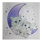 Iuhan  Special 5D Diamond Painting for Kids and Adults, Lovely Cat Special Shaped Diamond Painting DIY 5D Cross Stitch Kits Crystal Rhinestone of Picture Serial Diamond Embroidery Arts Craft (B)