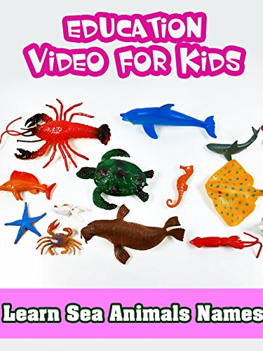 Crabs Animals (Learn Sea Animals Names - Education Video for Kids)