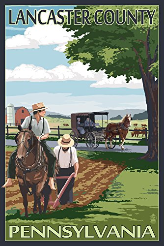 (Lancaster County, Pennsylvania - Amish Farm Scene (9x12 Art Print, Wall Decor Travel Poster))