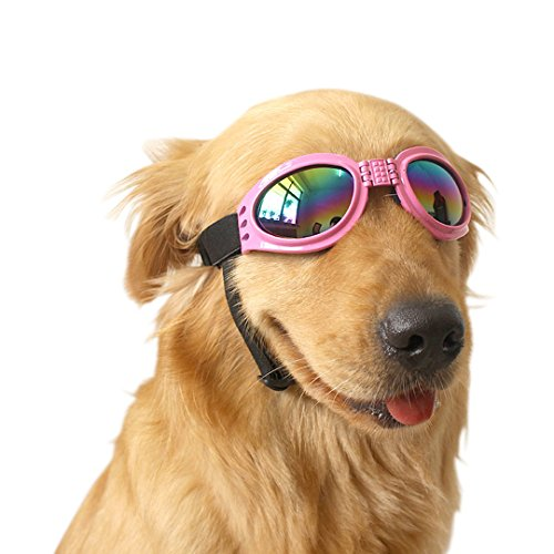 Ennc Pet Goggles UV Protective Foldable Dog Sunglasses Lenses Eye Wear Protection with Adjustable - Don Sunglasses