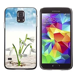 SAMSUNG Galaxy S5 V / i9600 / SM-G900 , Radio-Star - Cáscara Funda Case Caso De Plástico (White Spring Flowers)