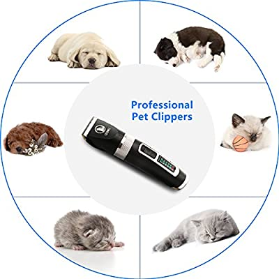 Ceenwes Dog Clippers Heavy Duty Low Noise Rechargeable Cordless Pet Clippers Professional Dog Grooming Clippers with Power Status Dog Grooming Kit with 11 Tools for Dogs Cats Other Animals by Ceenwes