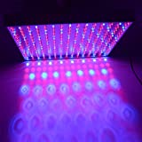 Excellent Blue Red Mixed 225 LED Hydroponic Grow Light Panel Indoor Garden Plant Lamp 14W US Plug Review
