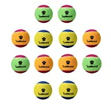 SCENEREAL Small Tennis Balls for Dogs – 12Pcs/Set Squeaky Toys for Pets Playing and Training 1.6″