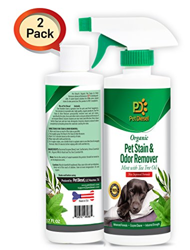 Pet Diesel 2 Pack Organic Pet Stain & Odor Remover Spray - Best Enzyme Cleaner For Pet Odor Eliminator | Dog & Cat Urine Stain Removal - Mint - Ideal For Wide Area Stains - By
