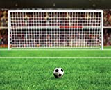 JP London uStrip Peel and Stick Mural MD4139PS Soccer World Cup Fifa Net Kick Removable Football Mural, 10.5-Feet by 8.5-Feet