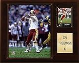 NFL Joe Theisman Washington Redskins Player Plaque