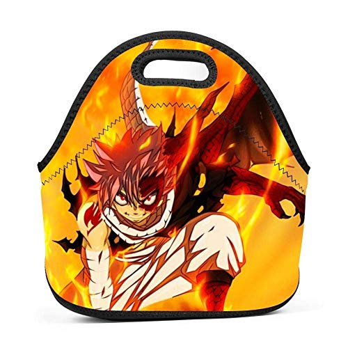 Dmgp Home Fairy-Tail Natsu Dragneel Fire Insulated Thermal Cooler Tote Lunch Bag/Bento Bag/Picnic Box For Adults Kids