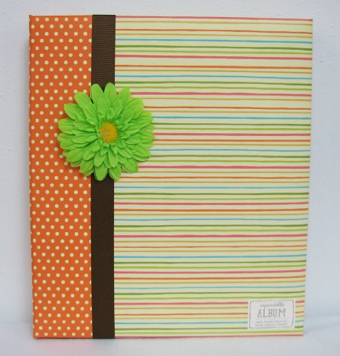 Hallmark EDY2125 Large Expandable Album - Springy Dots and Stripes ()