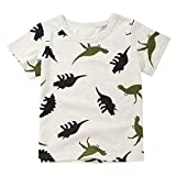 Baby T-Shirt,for 1-6 Years Old Cute Newborn Baby Boys Short Sleeve Dinosaur Print T-Shirt Blouse Tee Tops Summer Clothes (2-3 Years Old, Gray)