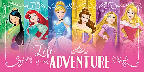Disney Princesses Life is an Adventure Printed Canvas 24W x 12H x 1.25D (Hanging Princess Wall Canvas)
