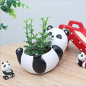 Generic Micro paisaje plantas suculentas Creative flores macetas, plantas Mini maceta, cerámica decoración, hecho a mano, pequeños contenedores de plantas, Panda Diseño maceta suculentas