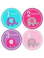 Months in Motion 085 Monthly Baby Stickers Baby Girl Month 1-12 Milestone Age