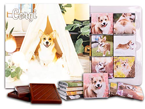 DA CHOCOLATE Candy Souvenir CORGI Chocolate Gift Set 5x5in 1 box (Smile)
