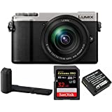PANASONIC LUMIX GX9 4K Mirrorless with 12-60mm plus DMW-HGR2 Authentic LUMIX GX9 Camera Grip Bundle (Silver)