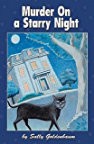 Murder on a Starry Night (Queen Bees Quilt Mysteries Book 3)