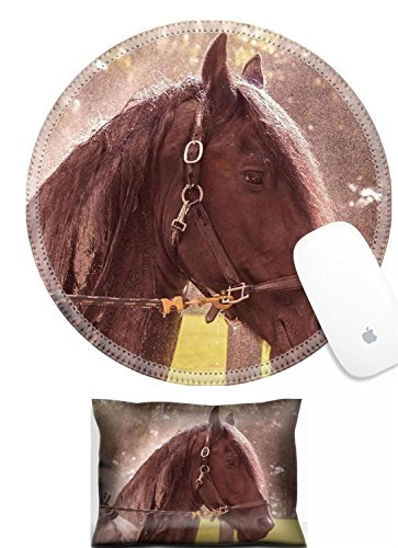 Price comparison product image Luxlady Mouse Wrist Rest and Round Mousepad Set, 2pct IMAGE: 31423627 Black brown horse wet getting a bath with a vintage retro filter