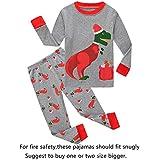 Family Feeling Big Boys Girls Long Sleeve Christmas Pajamas Sets 100% Cotton Pyjamas Kids Pjs Size 10 Dinosaur