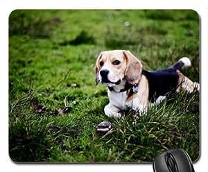 Beagle Cute Cool Decorative Design Animal Dog Mousepad
