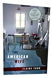 American Wife (Michigan Literary Fiction Awards)