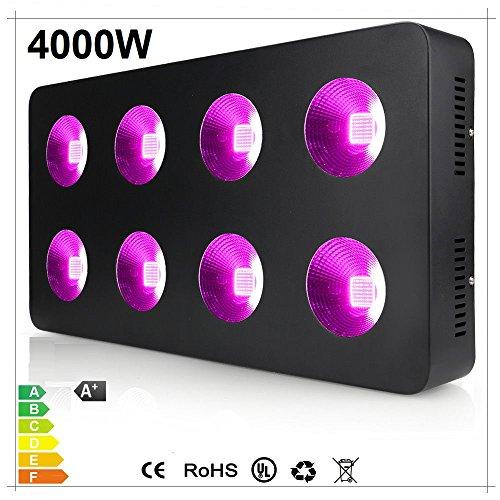 4000 Watt Led Light