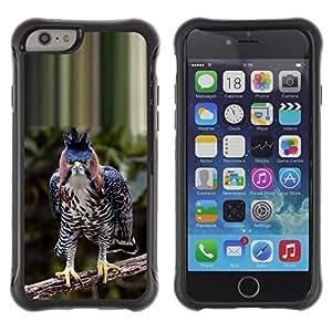 LASTONE PHONE CASE / Suave Silicona Caso Carcasa de Caucho Funda para Apple Iphone 6 / tropical hawk bird prey branch blue