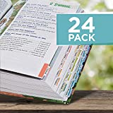 Fun Express Books of The Bible Reading Tabs (Set of 24 Color Coded tabs) Bible Study and Sunday School Supplies