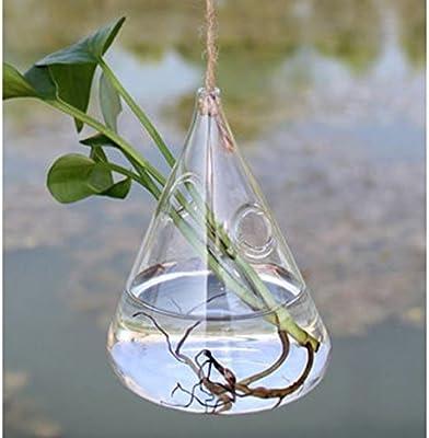 Colgante con forma de gotas de agua cristal flor hidropónico Jarrón Decoración Casa Jardín Boda Fiesta por shopidea: Amazon.es: Hogar